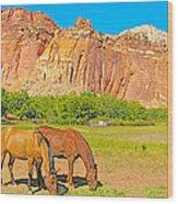 Horses On The Gifford Farm In Fruita In Capitol Reef National Park-utah Wood Print