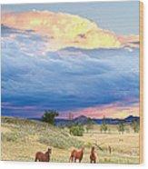 Horses On The Storm 2 Wood Print