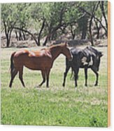 Horses Out Wickenburg Way Wood Print