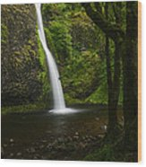Horsetail Falls Columbia River Gorge Wood Print