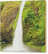 Horsetail Falls In The Spring Wood Print