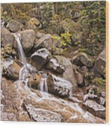 Horsethief Falls - Cripple Creek Colorado Wood Print
