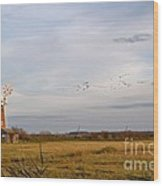 Horsey Windmill In Autumn Wood Print