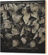 Hortensia Wood Print