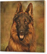 Hoss - German Shepherd Dog Wood Print