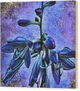 Hosta Blossom Wood Print