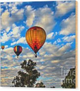 Hot Air Balloons Over Trees Wood Print