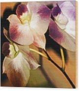 Hot Orchid Nights Wood Print