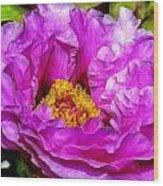 Hot-pink Flower Wood Print