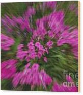Hot Pink Flower Zoom Wood Print