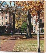 Hot Pink Hoodie - Davidson College Wood Print