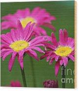 Hot Pink Wood Print