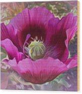 Hot Pink Poppy Wood Print