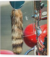 Hot Rod Coon's Tail Wood Print