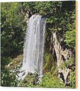 Hot Springs Wood Print