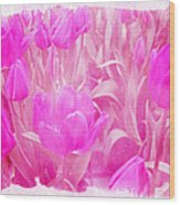 Hot Stuff   In Your Face Pink Tulips Wood Print