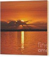 Hot Summer Sunrise  Wood Print