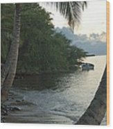 Hotel Molokai Beach Wood Print