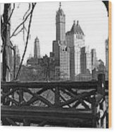 Hotels Seen From Central Park  Wood Print