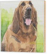 Hound Dog Watercolor Portrait Wood Print