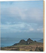 Hound Tor On Dartmoor  Wood Print