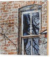 House 13086 Wood Print