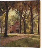 House And Trees Wood Print