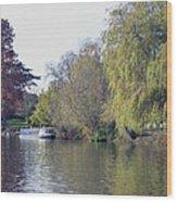House Boat On River Avon Wood Print