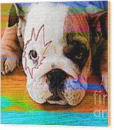 House Broken Bulldog Puppy Wood Print