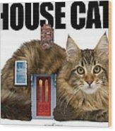House Cat Wood Print