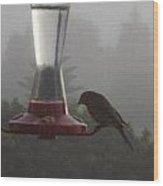 House Finch In The Fog Wood Print