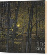 House In The Woods Wood Print
