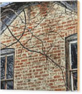 House Two Windows 13089 Wood Print