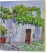 House With Vine In Lebanon Wood Print
