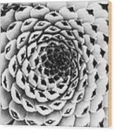 Houseleek Pattern Monochrome Wood Print