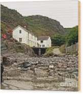 Houses At Kynance Cove Wood Print