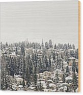 Houses On The Mountain In Winter Wood Print