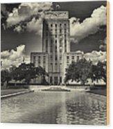 Houston City Hall Wood Print