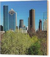 Houston Skyline, Houston, Texas Wood Print