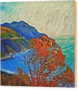 Hout Bay Wood Print