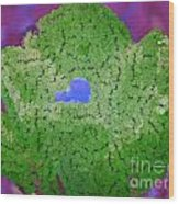 How Things Were Purple Green Blue Wood Print