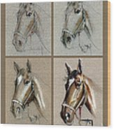 How To Draw A Horse Portrait Wood Print