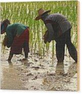 How We May Enjoy Rice Wood Print