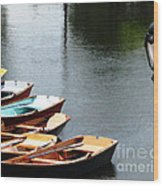 Hoyt Lakes Rowboats In Delaware Park Buffalo Ny Oil Painting Effect Wood Print