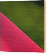 Hr158 Wood Print
