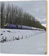 Hst In The Snow  Wood Print
