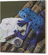 Huckleberry Frog II Wood Print