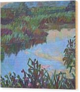 Huckleberry Line Trail Rain Pond Wood Print