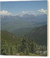 View Of The Rockies From Huckleberry Mountain Glacier National Park Wood Print