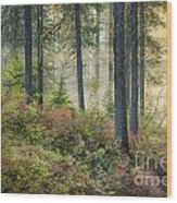 Huckleberry Patch Wood Print